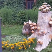 Хочешь грибочек?