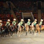 Семь лошадиных сил