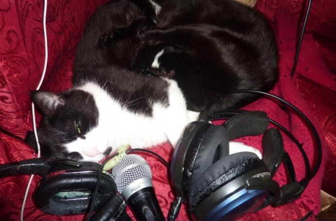 Уставшие музыканты.