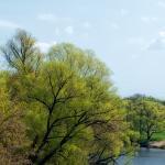 Весна (изображений 6)